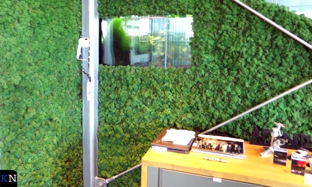 Naturlijk mos bedekt her en der de glaswanden op de kantoorverdieping.