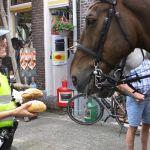 Het politiepaard heeft ook wel trek in een paar broodjes.