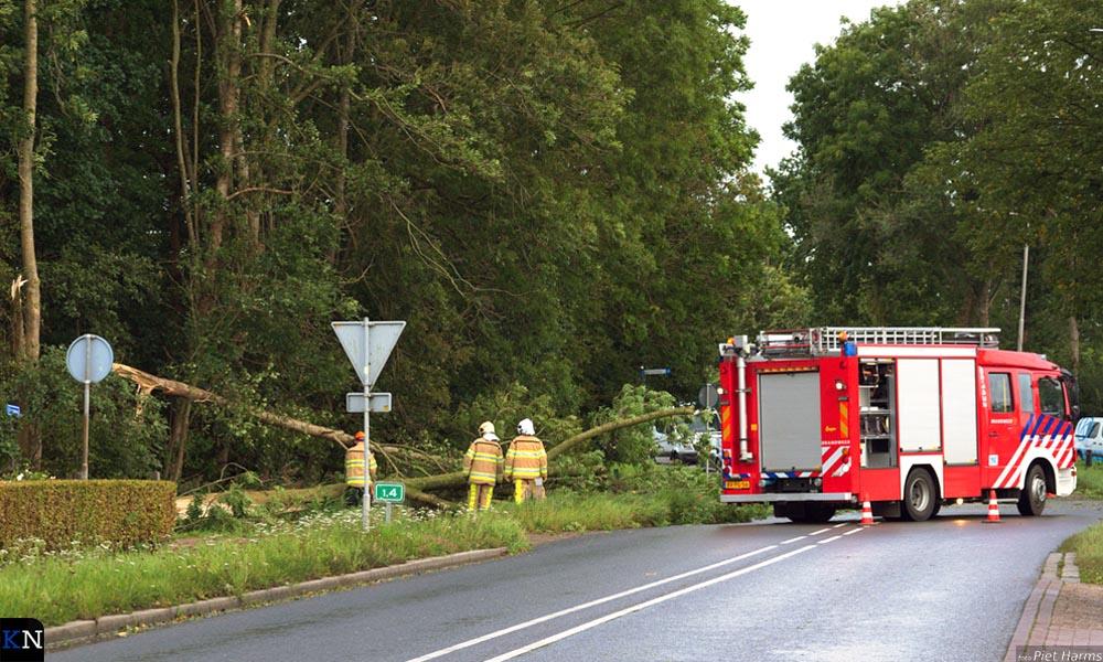 Op de Grafhorsterweg kwam de brandweer in actie om gevelde bomen van het wegdek te halen.