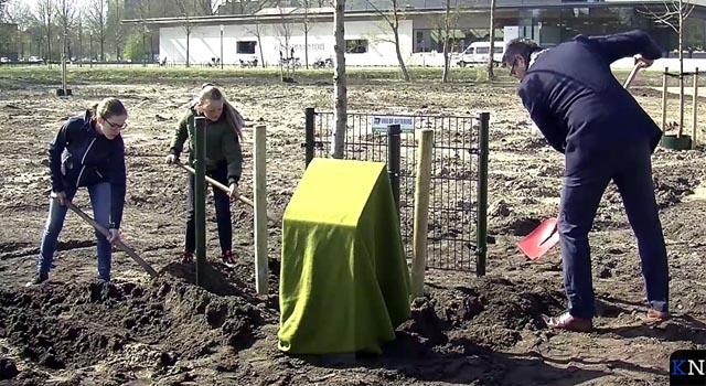 Boom van de Vrijheid geplant in Groene Hart (video)
