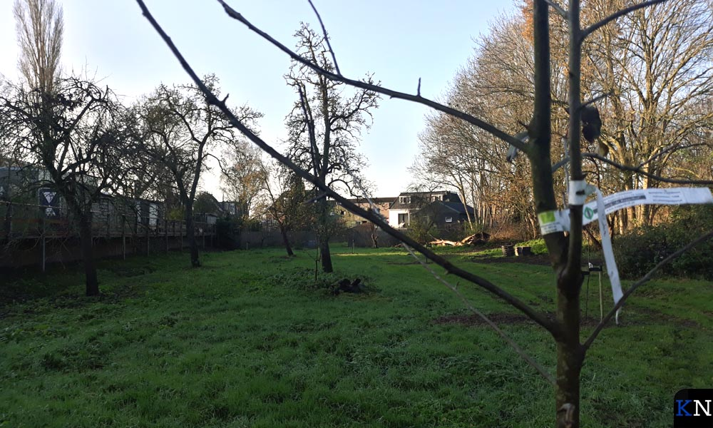Oude fruitboomrassen opnieuw aangeplant in Voedselpark De Groene Brunneper