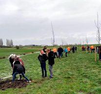 Nationale Boomfeestdag 2019 in Kampen tersluiks gevierd
