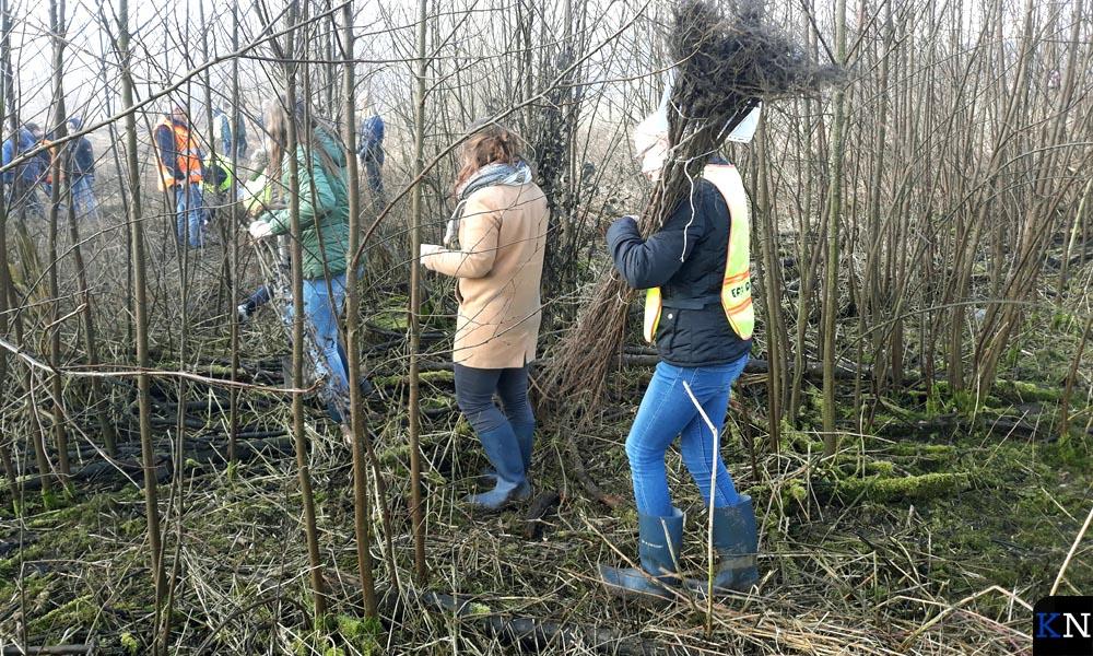 De leerlingen trekken het bos voor plantsoenaanplant.
