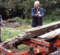 Hout oude Stadsbrug verzaagd voor nieuwe Parkbruggen (video)