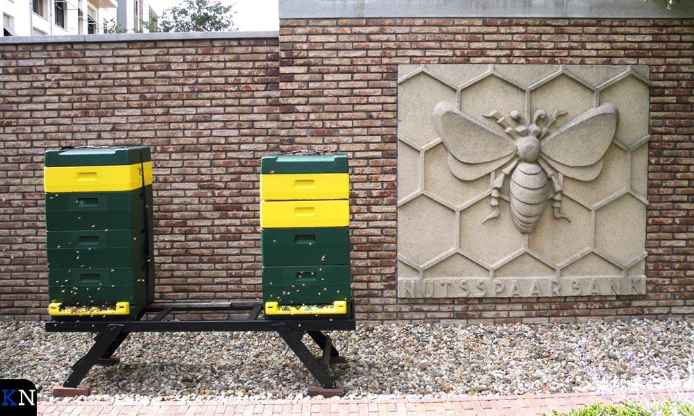 De binnentuin van het SNS Historisch Centrum heeft ook plek voor bijen.