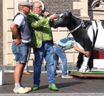 Kamper Ui(t)dagen van start met hijsen koe