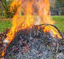 Verbranding hout snoeiafval in buitengebied niet meer toegestaan