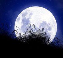 Beleef de nacht met cultuurZIEN en GroenLinks (video)