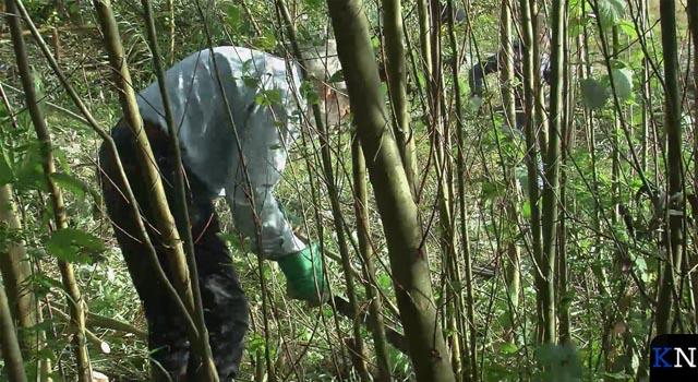 Terrein voor Voedselbos gereed gemaakt (video)