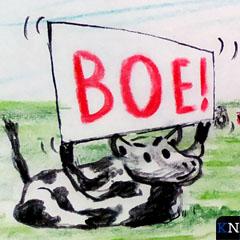 Protesterende koe