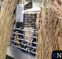 Aandacht voor rietmoeras in Oudestraat