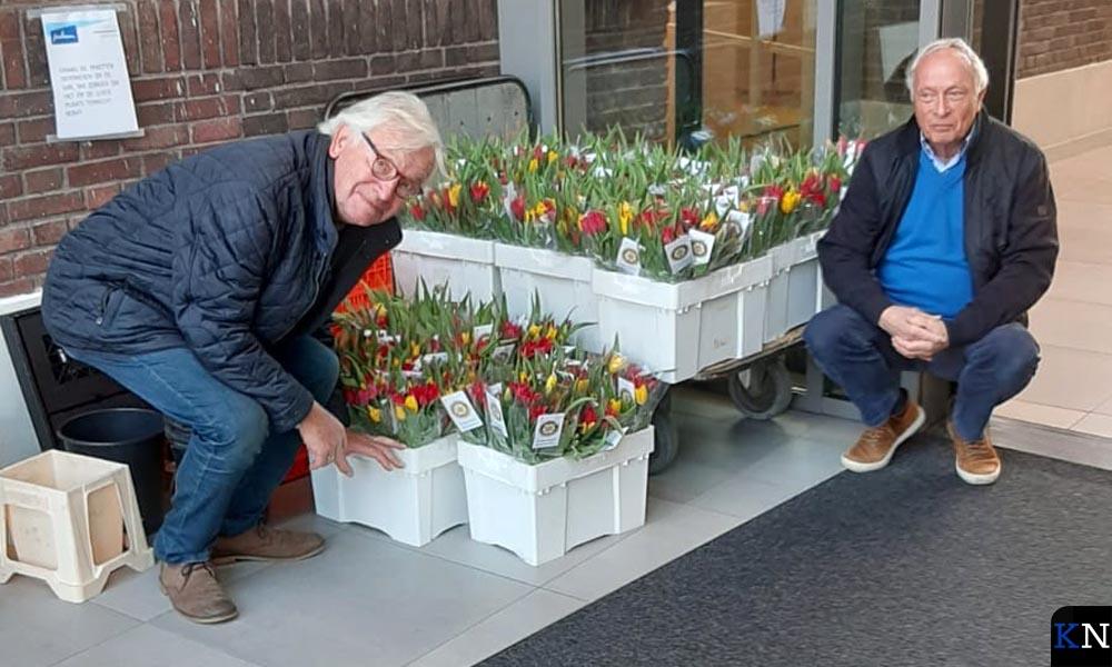 Planting van tulpenbollen dor Rotary Club Kampen.