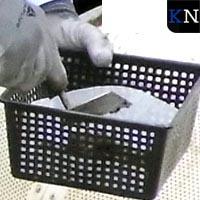 Reevediep levert archeologische vondsten op