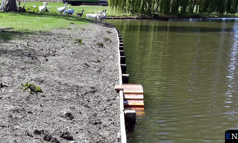 Eendentrappetje in het Groene Hart van Kampen.