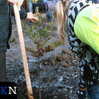 Eerste Tiny Forest in Kampen aangeplant bij Villa Nova