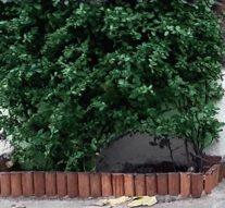 Meer groen in Brunnepe met geveltuintjes