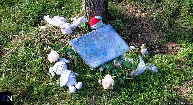 Intern onderzoek dodelijk ongeval met grasmaaier gepresenteerd (video)