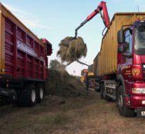 Maaien dijken WDO Delta gegund aan Van der Weerd Grafhorst
