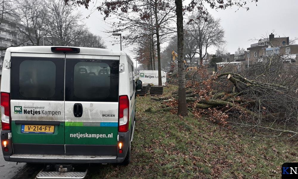 Aannemingsbedrijf Netjes voert de bomenkap uit.
