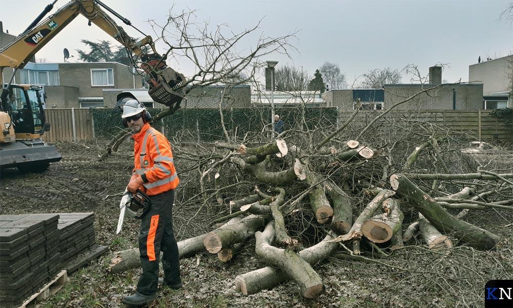 Werknemers van Netjes zijn druk doende met de bomenkap.