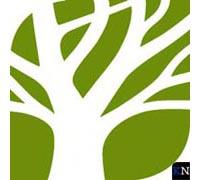 Bomenstichting introduceert<br>'Bomen van de Ereklasse'