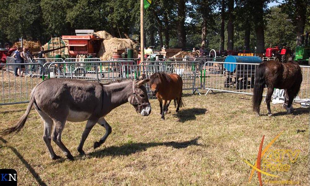 De landbouwdieren van weleer ontbraken niet op de Oogstdag Kamperveen.