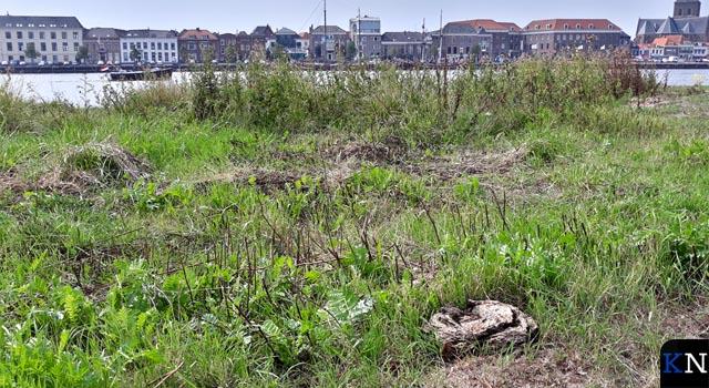 VVD en D66 vragen opnieuw aandacht voor stadsstrand